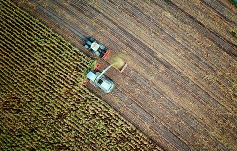 Récolte agriculture Granville